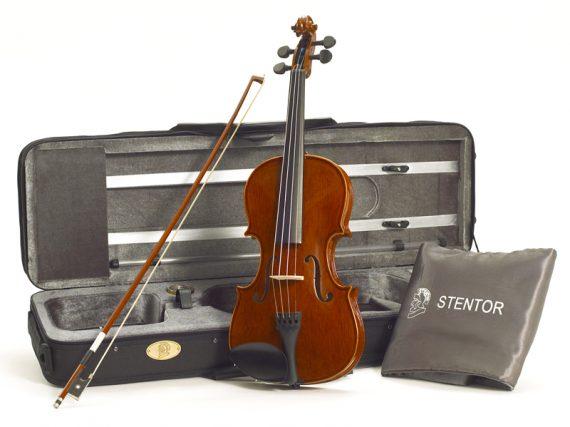 O violino certo